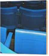 Blue Jay Seats Wood Print