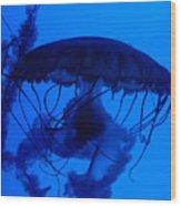 Blue Jelly Fish Wood Print