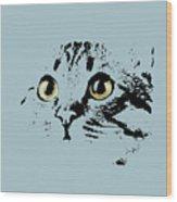 Blue Kitten Portrait Wood Print