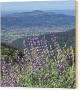 D3b6377-blue Lupine And Kenwood  Wood Print