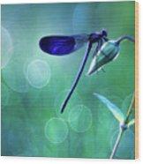 Blue Magic Wood Print