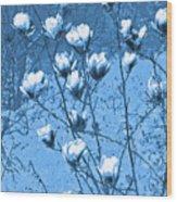 Blue Magnolia Wood Print