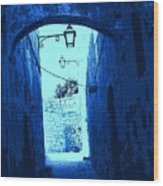 Blue Maltese Arch Wood Print