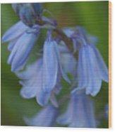 Blue Memories Wood Print