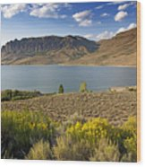 Blue Mesa Lake In Gunnison County Colorado Wood Print