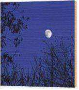 Blue Moon Among The Tree Tops Wood Print