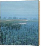 Blue Morning Flash Wood Print