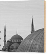 Blue Mosque, Istanbul Wood Print