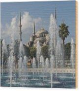 Blue Mosque Through The Fountain Wood Print