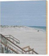 Blue Mountain Beach II Wood Print