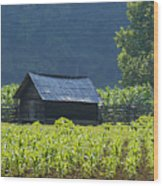 Blue Mountain Farm Wood Print