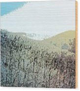 Blue Mountain Scrub Wood Print
