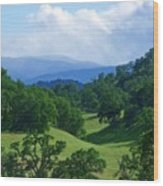 Blue Mountains Green Pastures Wood Print