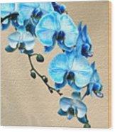 Blue Mystique Orchid Wood Print