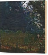 Blue Night In The Field Wood Print