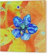 Blue on Yellow Wood Print