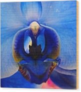 Blue Orchid Heart Wood Print