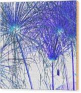 Blue Papyrus Wood Print by Dana Patterson