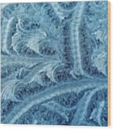 Extraordinary Hoarfrost Scallop Patterns In Blue Wood Print