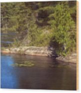 Blue Pond Marsh Wood Print