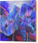Blue Poppies On Red Wood Print