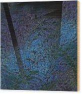 Blue Reflection Wood Print