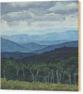 Blue Ridge From Grassy Bald  Study Wood Print