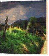 Blue Ridge Mountain Country Road Wood Print
