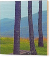 Blue Ridge Mountains Of Virginia Wood Print