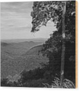 Blue Ridge Mountains - Virginia Bw 10 Wood Print