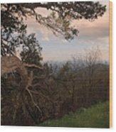 Blue Ridge Mts Wood Print