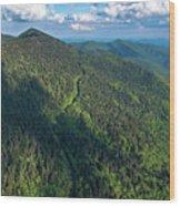 Blue Ridge Parkway At Balsam Gap Wood Print