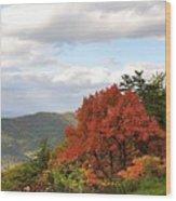 Blue Ridge Parkway, Buena Vista Virginia 5 Wood Print