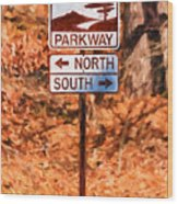 Blue Ridge Parkway Sign Wood Print