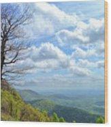 Blue Ridge Parkway Views - Rock Castle Gorge Wood Print by Kerri Farley