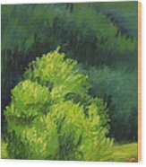 Blue Ridge Sentinel Wood Print