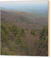 Blue Ridge View Wood Print