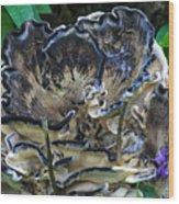 Blue Rimmed Fungus Wood Print