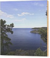 Blue Sea And Pine Trees Wood Print