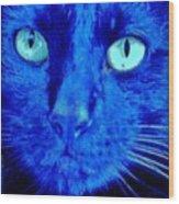 Blue Shadows Wood Print