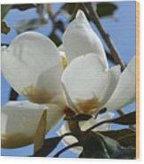 Blue Skies Magnolia Wood Print