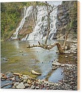Blue Skies Over Ithaca Falls Wood Print