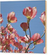 Blue Sky Art Prints Pink Dogwood Flowers 16 Dogwood Tree Art Prints Baslee Troutman Wood Print