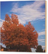 Blue Sky Autumn Wood Print