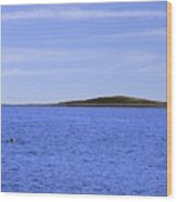 Blue Sky Blue Water And Earth Divider Wood Print
