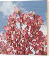 Blue Sky Clouds Landscape 7 Pink Dogwood Tree Baslee Troutman Wood Print
