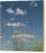 Blue Sky Drive-in Wood Print
