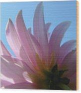 Blue Sky Floral Art Print Pink Dahlia Flower Baslee Troutman Wood Print