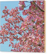 Blue Sky Floral Art Print Pink Dogwood Tree Flowers Baslee Troutman Wood Print