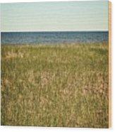 Blue Sky Green Grass Wood Print